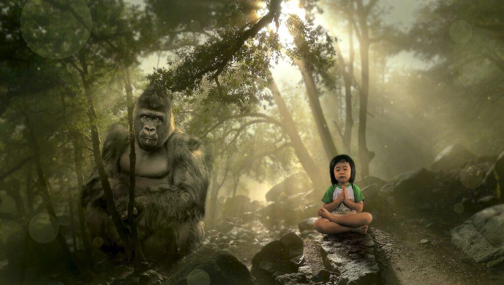 fantasy, forest, gorilla